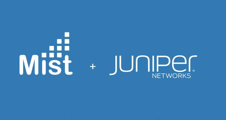 Juniper_Mist